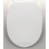 Крышка-сиденье Devon&Devon Classica 2IBSEBIAWCLACR, хром