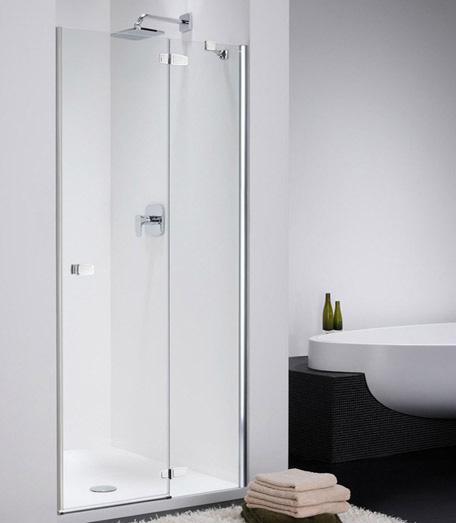 Душевая дверь в проем Provex Combi 0005 CN 05 GL