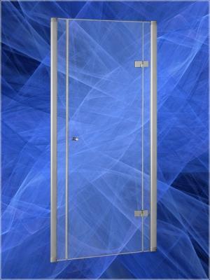 Душевая дверь Vagnerplast левосторонняя/правосторонняя шириной 100 см, арт. дв100 - Анодированный